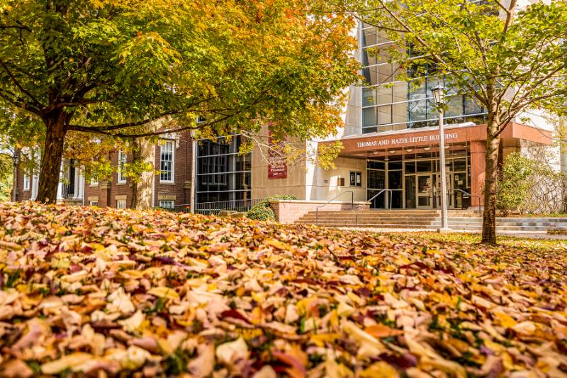 Fall leaves on a hill featuring the main entrance of the library