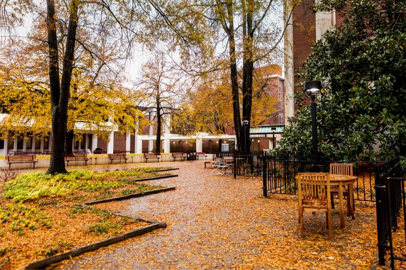 Wet leaves covering the ground and tables behind Keen Johnson