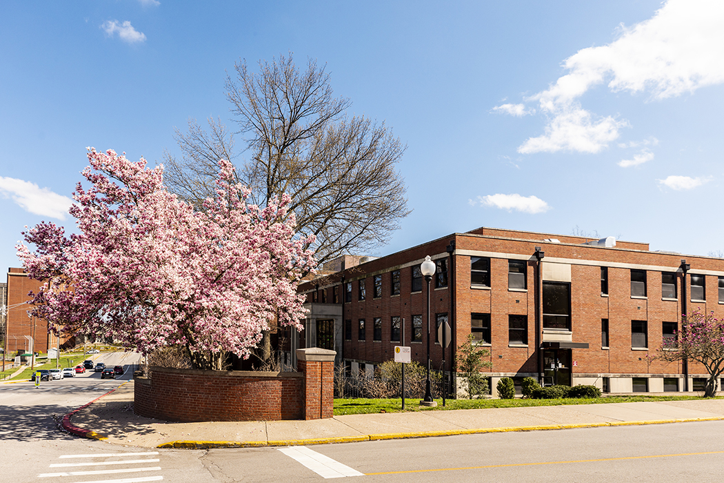 Side of Foster building with large tree in bloom with pink buds.